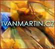 Ivan Martin obrazy
